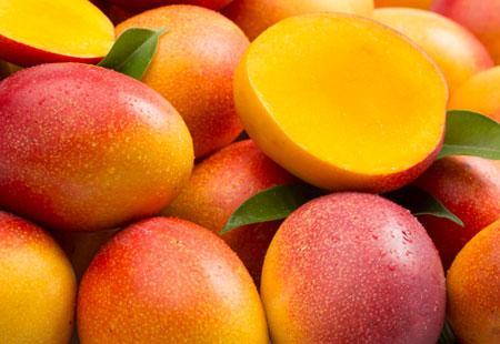 Eden della frutta vende all'ingrosso frutta tropicale come il mango