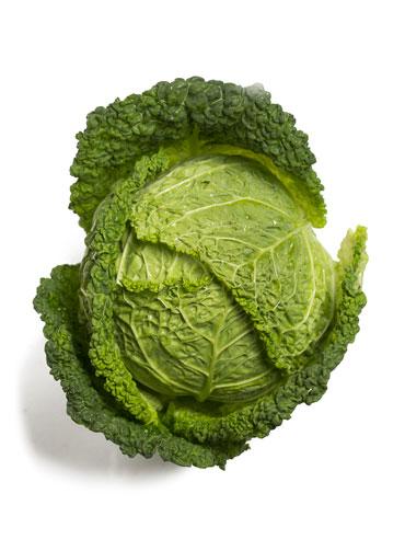 La verza, verdura di stagione per la slaute in cucina